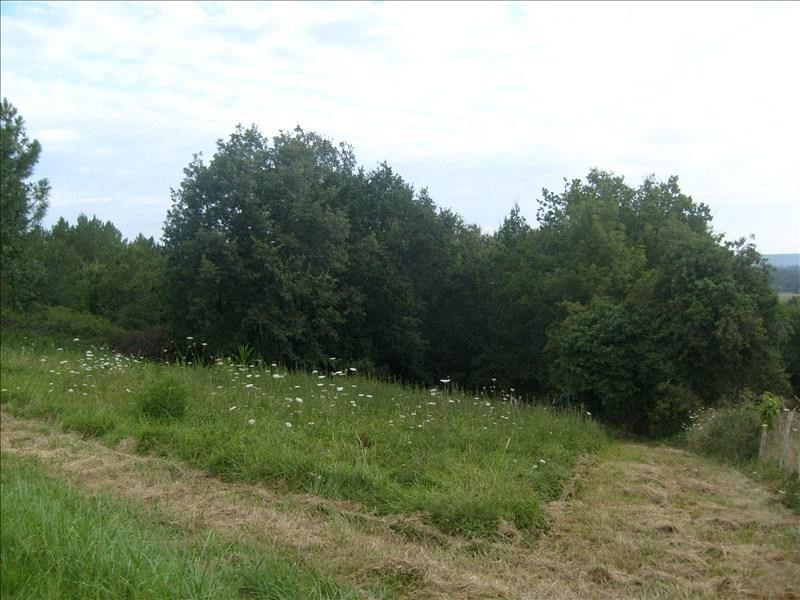 Vente terrain Beaupouyet 30 000€ - Photo 1