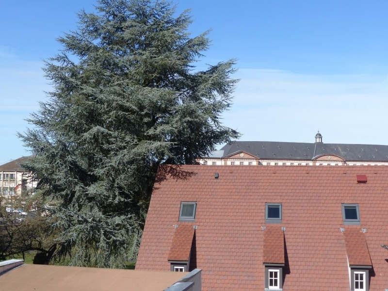 Vente appartement Haguenau 340 000€ - Photo 2