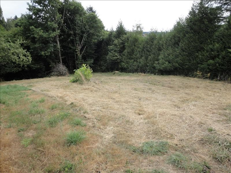 Sale site St priest taurion 24500€ - Picture 2