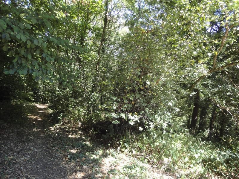 Vente terrain Limoges 19 500€ - Photo 1