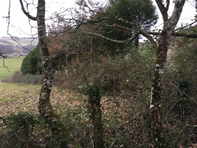 Vente terrain Coursac 30000€ - Photo 4
