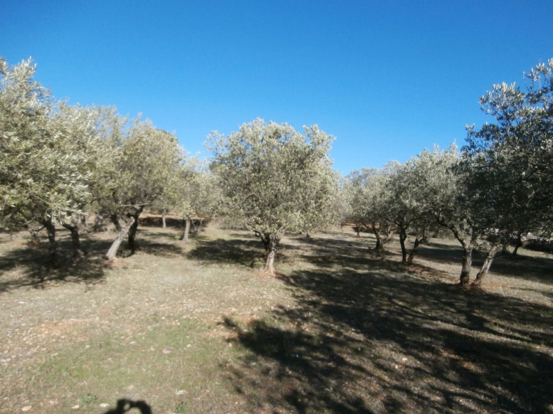 Vente terrain Flayosc 129 600€ - Photo 2