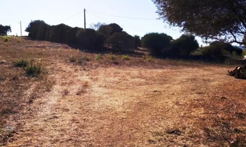 Vente terrain Serra-di-ferro 290000€ - Photo 5