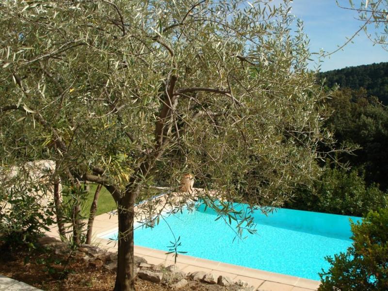 Vente de prestige maison / villa Ampus 589000€ - Photo 14