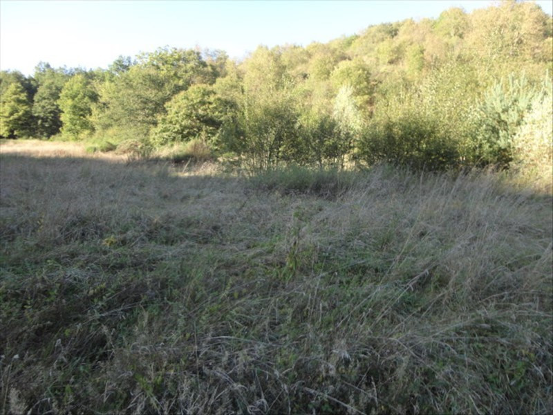 Sale site Manglieu 29 000€ - Picture 2