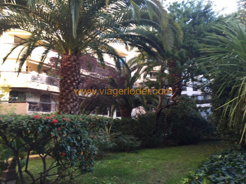 Life annuity apartment Nice 145 000€ - Picture 15