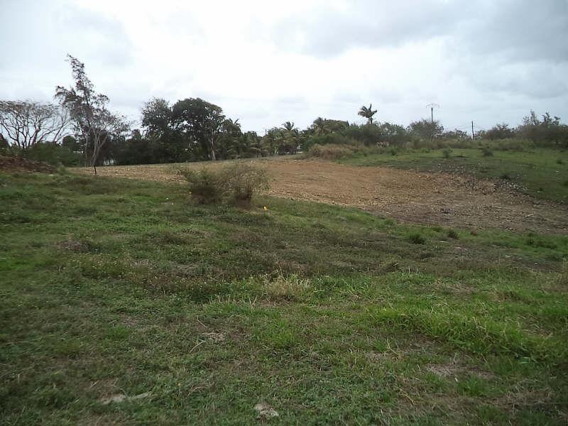 Vente terrain Ste anne 324000€ - Photo 5