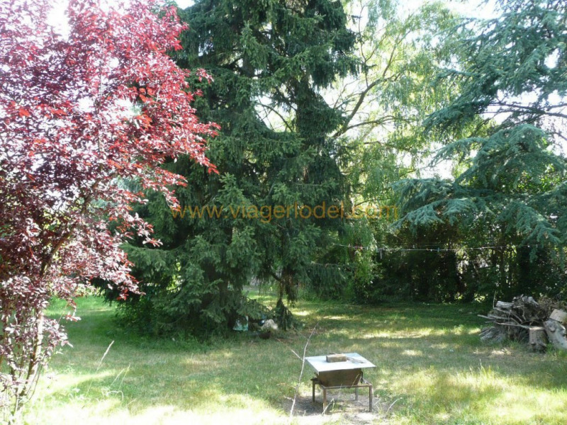 Life annuity house / villa Varennes jarcy 40000€ - Picture 3