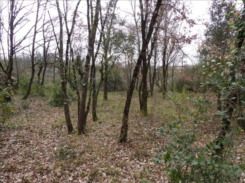 Vente terrain Montauban-est 71 000€ - Photo 1
