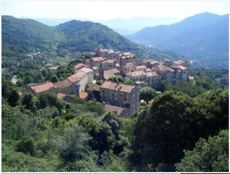 Vente maison / villa Ste lucie de tallano 270000€ - Photo 3