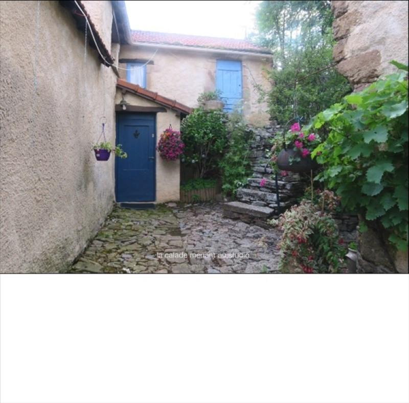 Sale house / villa St sernin sur rance 450000€ - Picture 4