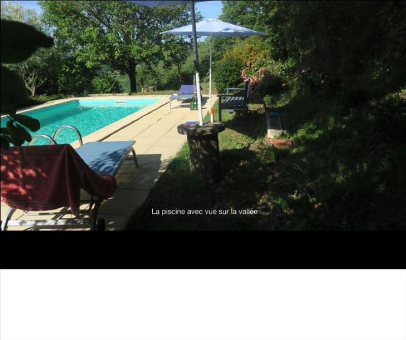 Sale house / villa St sernin sur rance 450000€ - Picture 8