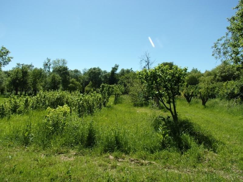Vente terrain Cambron 75000€ - Photo 8
