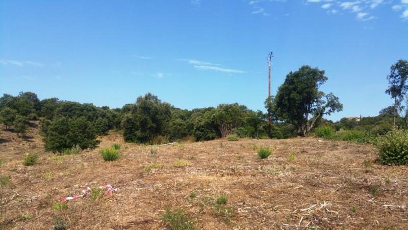 Vente terrain Cauro 135000€ - Photo 6