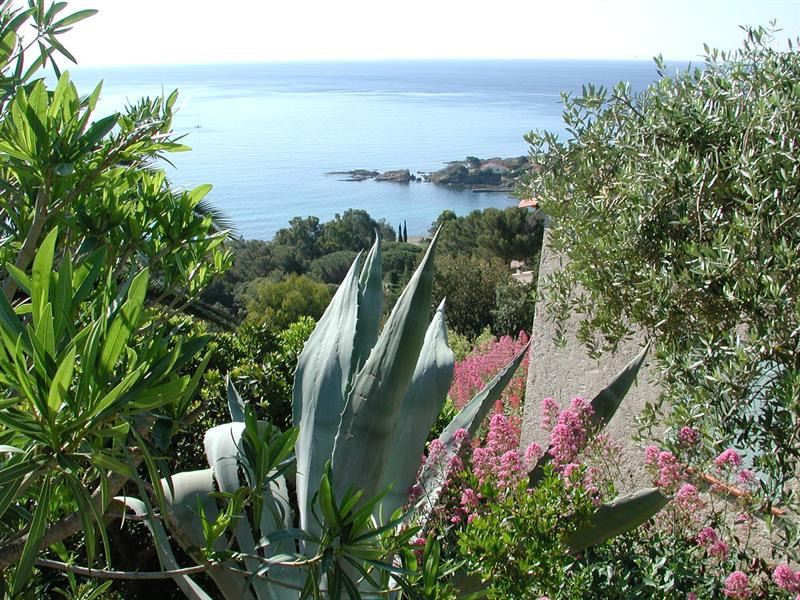 Vacation rental house / villa Les issambres 1910€ - Picture 14