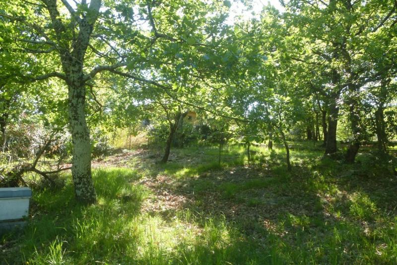 Vente terrain Vesseaux 84090€ - Photo 7