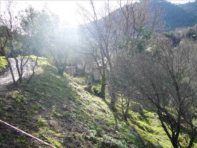 Vente terrain Gorbio 220000€ - Photo 3