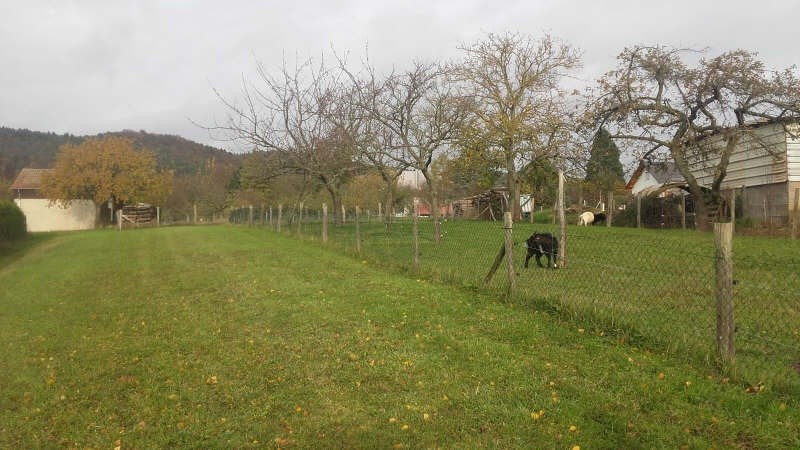 Vente terrain Thal marmoutier 66 000€ - Photo 3