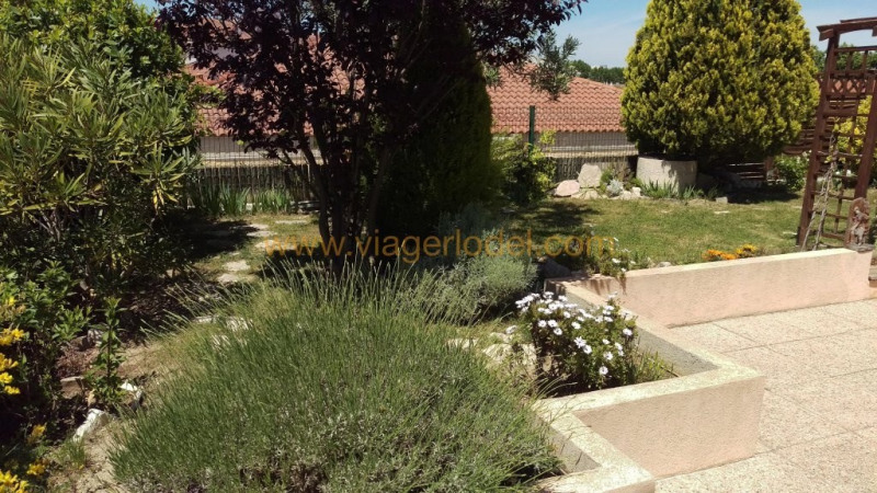 Viager appartement Montpellier 140 000€ - Photo 5