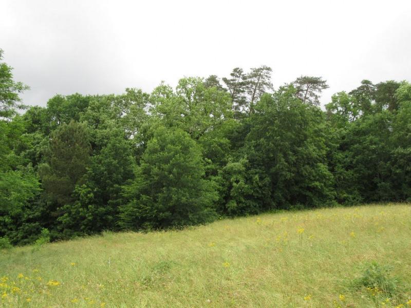Vente terrain Saint pierre de chignac 55000€ - Photo 1