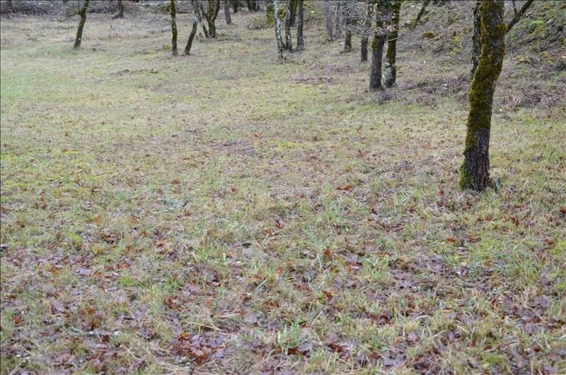 Vente terrain Figeac 33000€ - Photo 3
