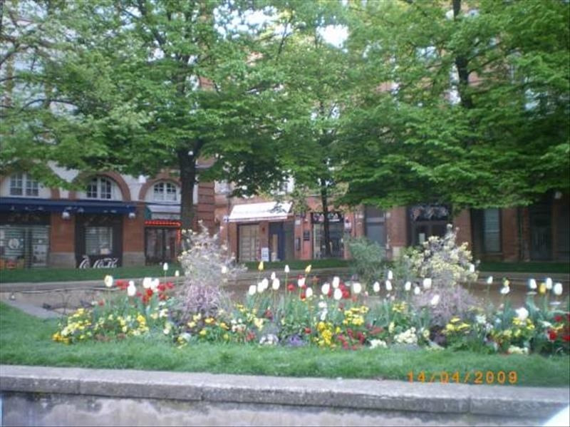 Vente appartement Toulouse 288956€ - Photo 1