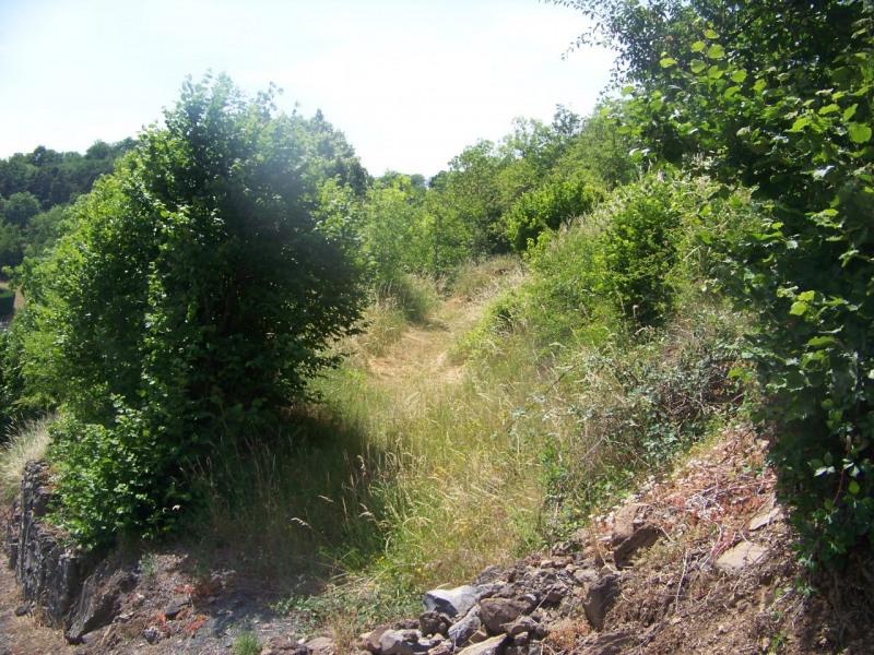 Vente terrain Ceyssac 53000€ - Photo 6