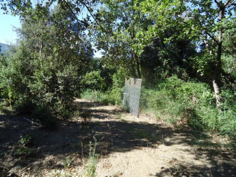 Vente terrain Reynes 120 000€ - Photo 4