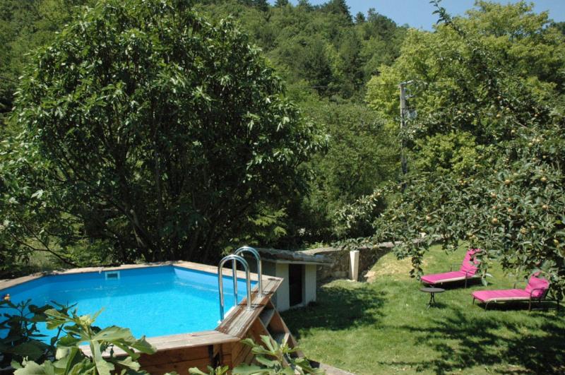 Vente de prestige maison / villa Grane 595000€ - Photo 3