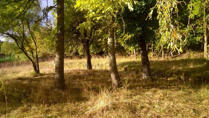 Vente terrain Brives charensac 37800€ - Photo 5