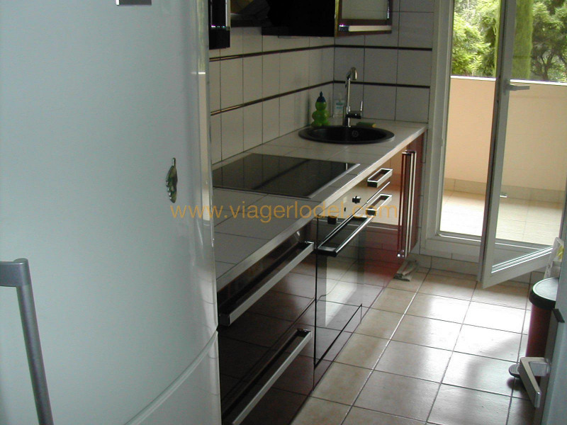 Life annuity apartment Saint-laurent-du-var 52 000€ - Picture 3