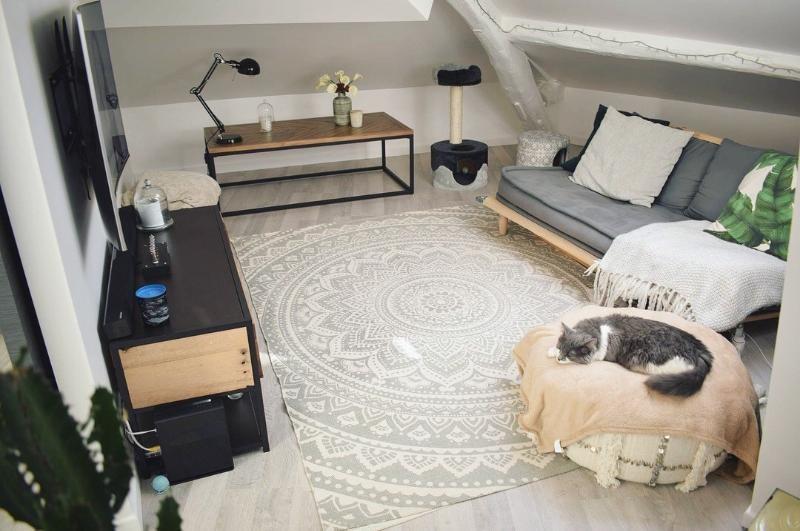 Location appartement Thorigny sur marne 680€ CC - Photo 2