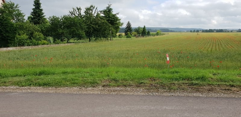 Vente terrain Evry 55000€ - Photo 3