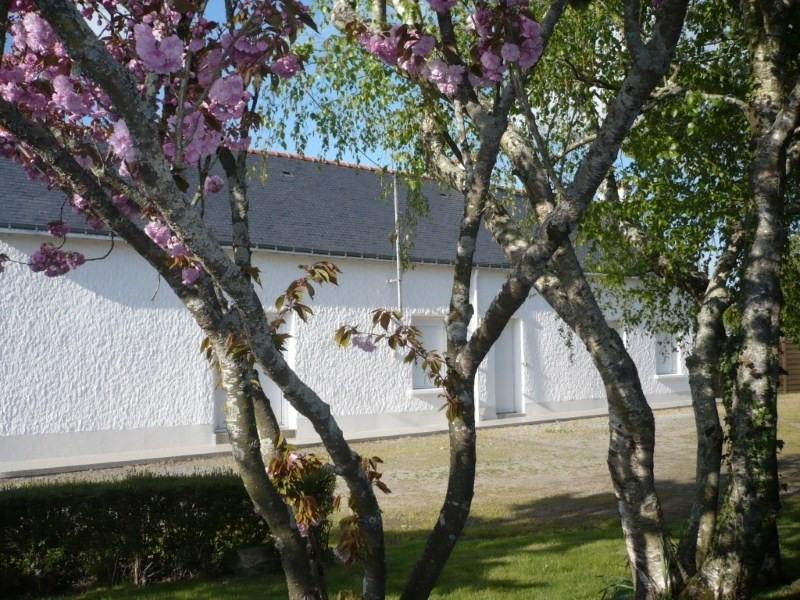 Location maison / villa Les touches 801€ CC - Photo 1
