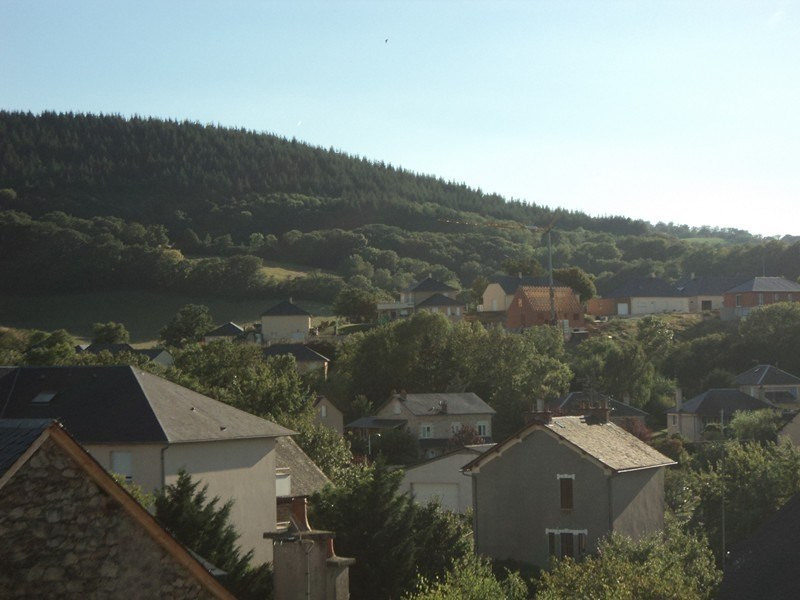 Location appartement Laissac 383€ CC - Photo 5
