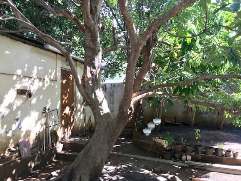 Produit d'investissement maison / villa L etang sale 336000€ - Photo 4
