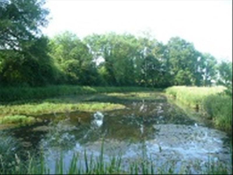Vente terrain Vailly sur sauldre 30000€ - Photo 1