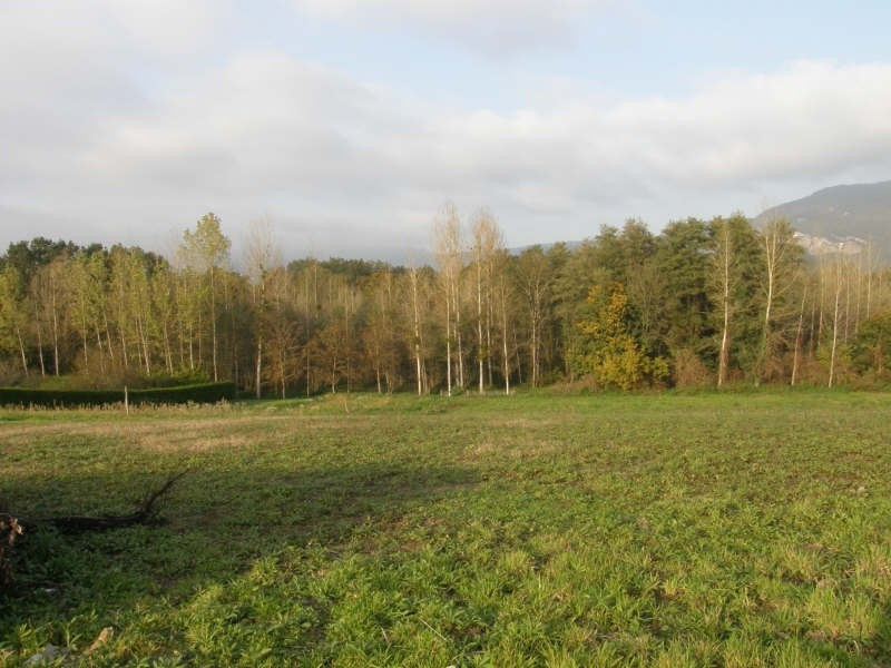 Sale site Morestel 45 500€ - Picture 2