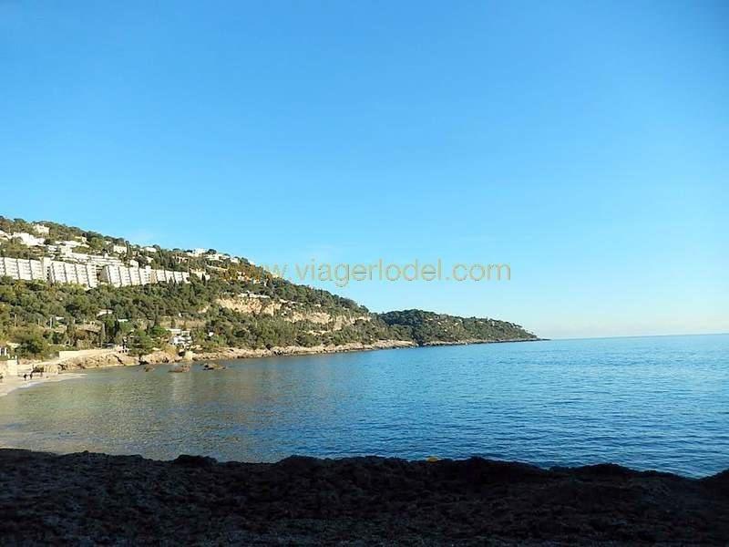 Vendita nell' vitalizio di vita negozzio Roquebrune-cap-martin 525000€ - Fotografia 5