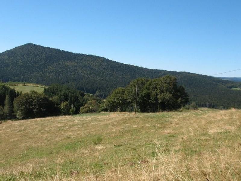 Vente terrain Usclades et rieutord 21000€ - Photo 1