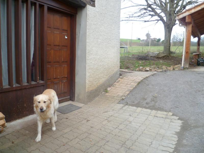 Sale house / villa Bessenay 230000€ - Picture 13