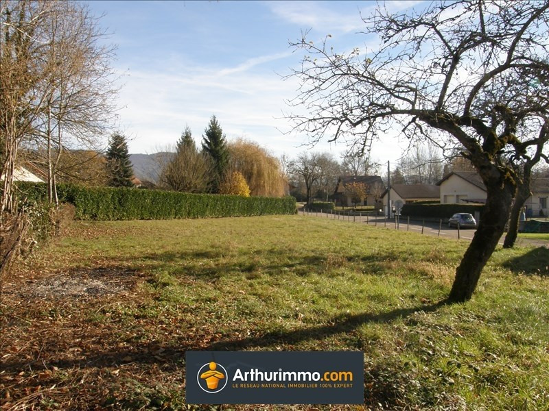 Sale site Creys et pusignieu 67000€ - Picture 1