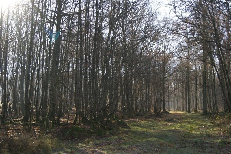 Vente terrain Charny 121000€ - Photo 9