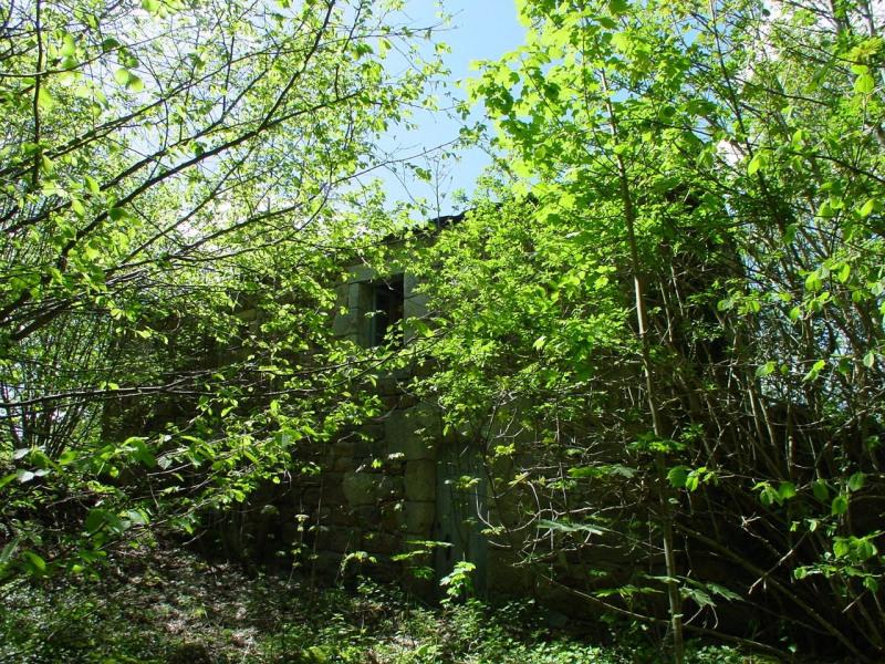 Vente maison / villa Devesset 61800€ - Photo 4