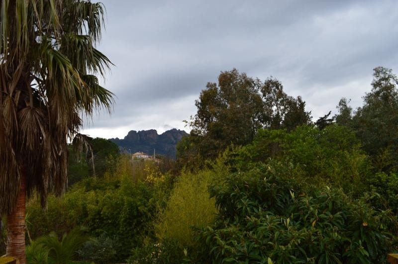 Vente maison / villa Roquebrune sur argens 550000€ - Photo 3