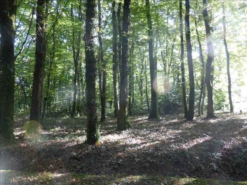 Vente terrain Plesse 59600€ - Photo 1