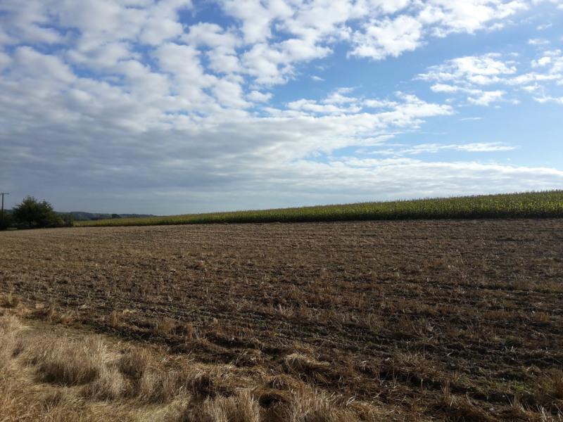 Vente terrain Prox thérouanne 45500€ - Photo 1