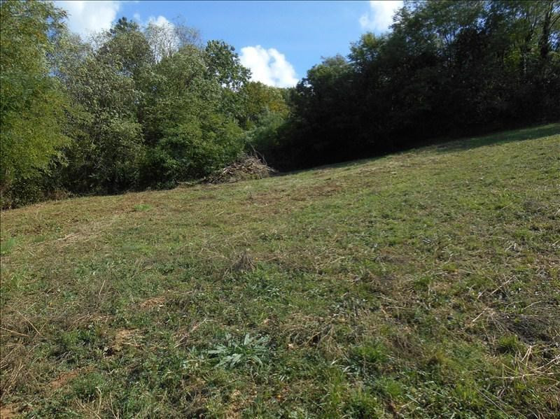Vente terrain Dizimieu 115000€ - Photo 2