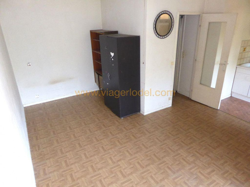 Life annuity apartment Vallauris 33 000€ - Picture 5