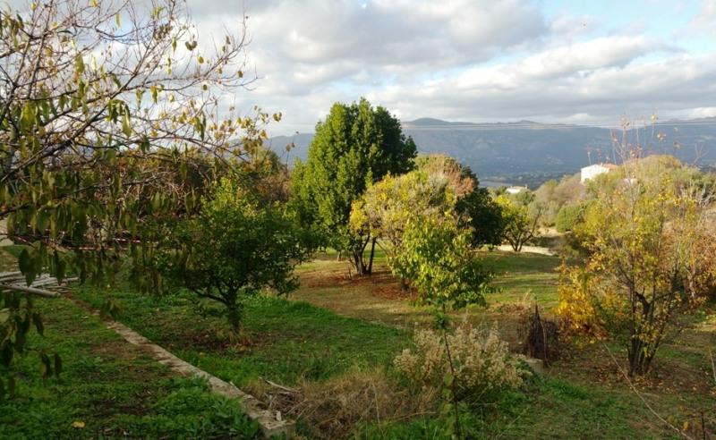 Vente terrain Bastelicaccia 160000€ - Photo 11